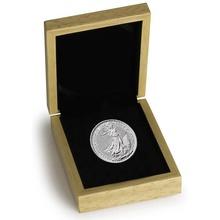 2019 1oz Platinum Britannia Coin Gift Boxed