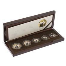 2001 Gold panda Premium Set
