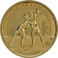 2010 1oz Gold Australian Nugget