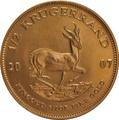 2007 Half Ounce Krugerrand Gold Coin