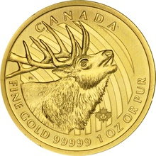 2017 1oz Canadian Elk Gold Coin