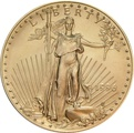 1996 1oz American Eagle Gold Coin
