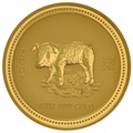 2007 10oz Year of the Pig Lunar Gold Coin