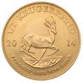 2014 Half Ounce Krugerrand