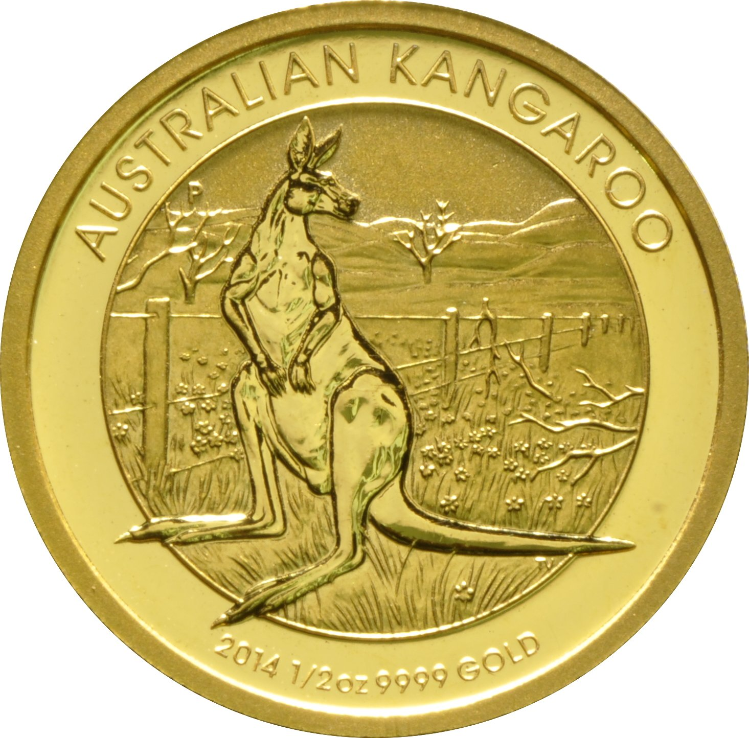 Buy 1 2oz Australian Nugget Gold Coins From Bullionbypost