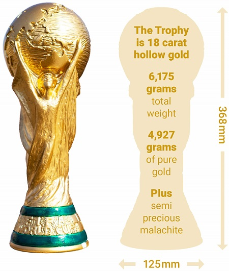 Graphic showing the World Cup, a hollow, 18-carat gold trophy.
