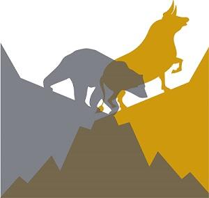A bull gold market with a bear stock market.